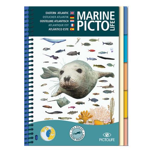 pictolife-atlantique