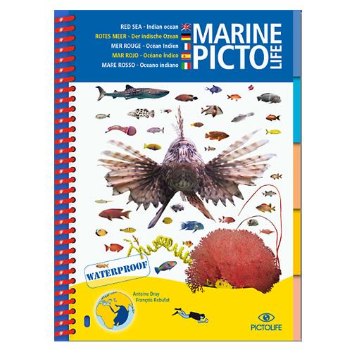 pictolife-mer-rouge