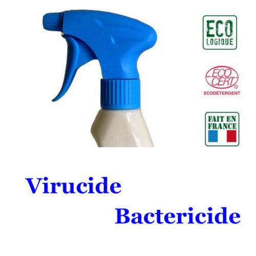 désinfectant 500ml